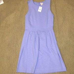 NWT JCREW cotton dress